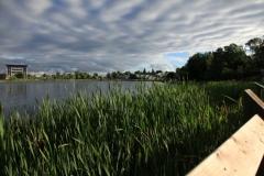 Gillies Lake
